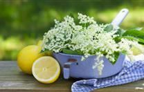 Do You Know What To Do With Elderflowers? Try These Exciting Recipes