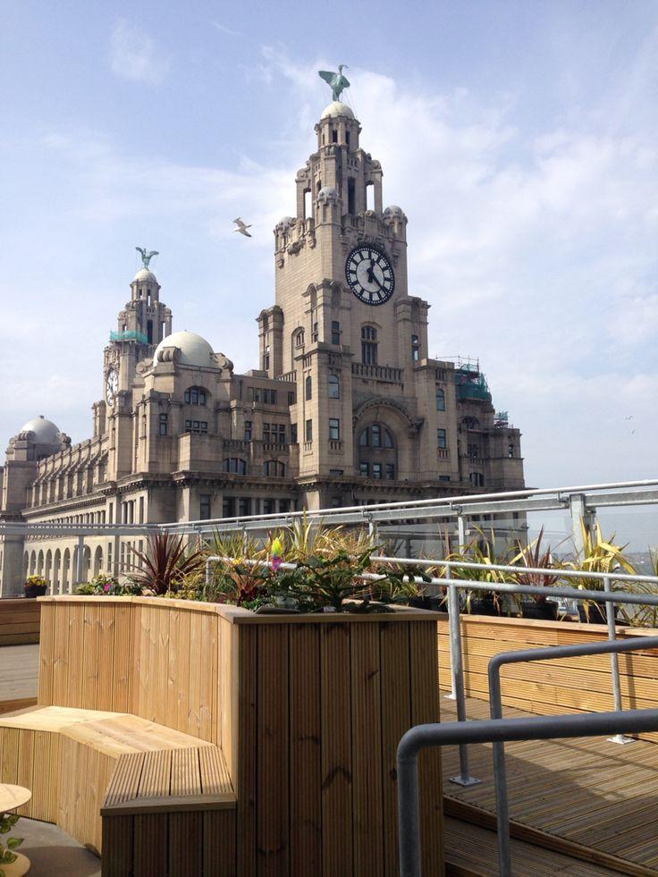 Goodness gracious roof top garden.