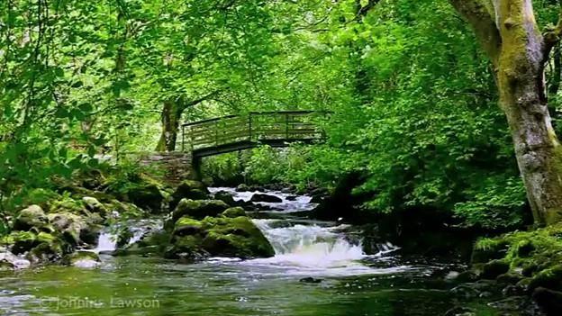 Descubre la cascada irlandesa que se ha convertido en una sensación en #YouTube http://bbc.in/1JQjEXF