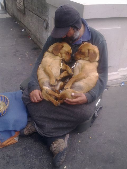 allcutepics:  A Homeless Man With His Dogs Source: http://imgur.com/lTG9Hx4