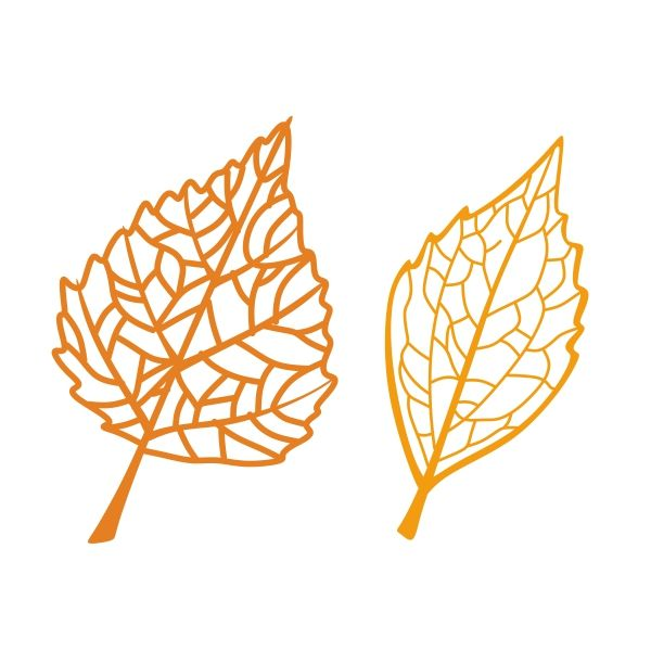 Best ideas about leaf stencil on pinterest