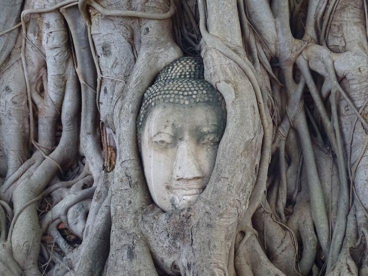 Tempelhoppen in Ayutthaya - Worldwife