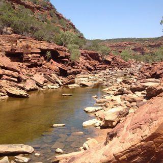 Murchison River, Western Australia #thisisWA #australia #thecoralcoast