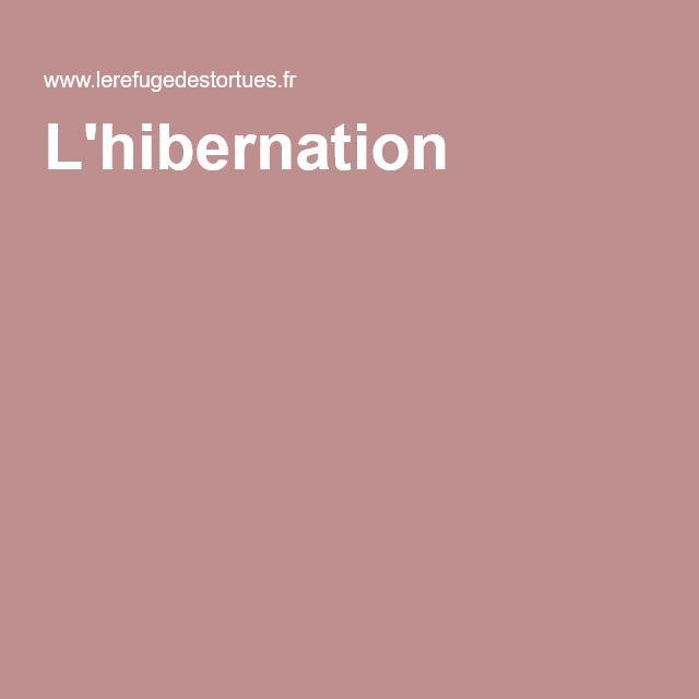 L'hibernation