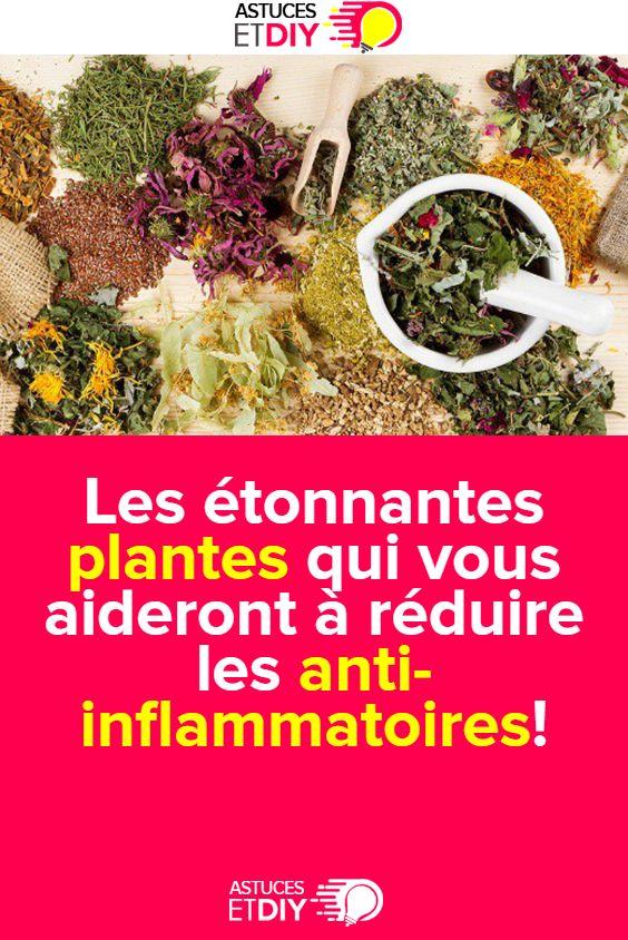 Les étonnantes plantes qui vous aideront à réduire les anti-inflammatoires! | Smoothie au ...
