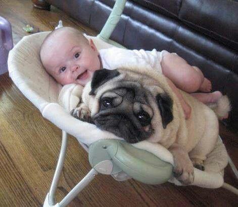 Baby + Pug = Adorable
