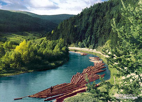 Bucovina, Romania - cu plutele pe Bistrita