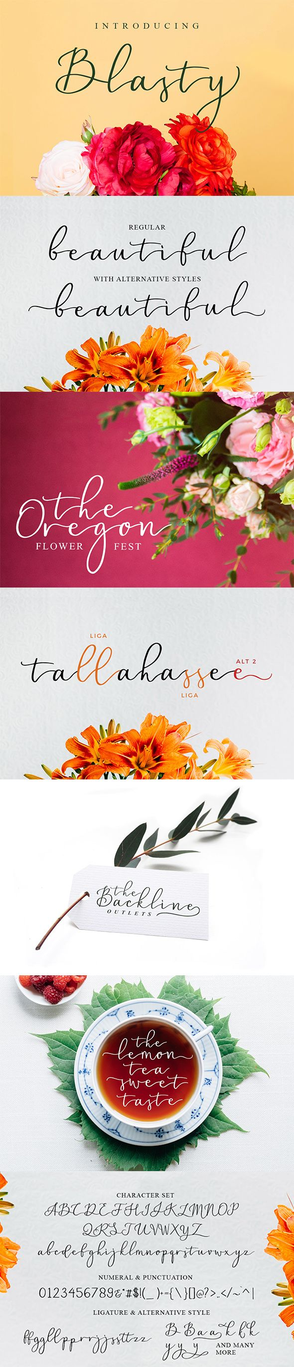 cursive fonts for wedding cards%0A Blasty Script