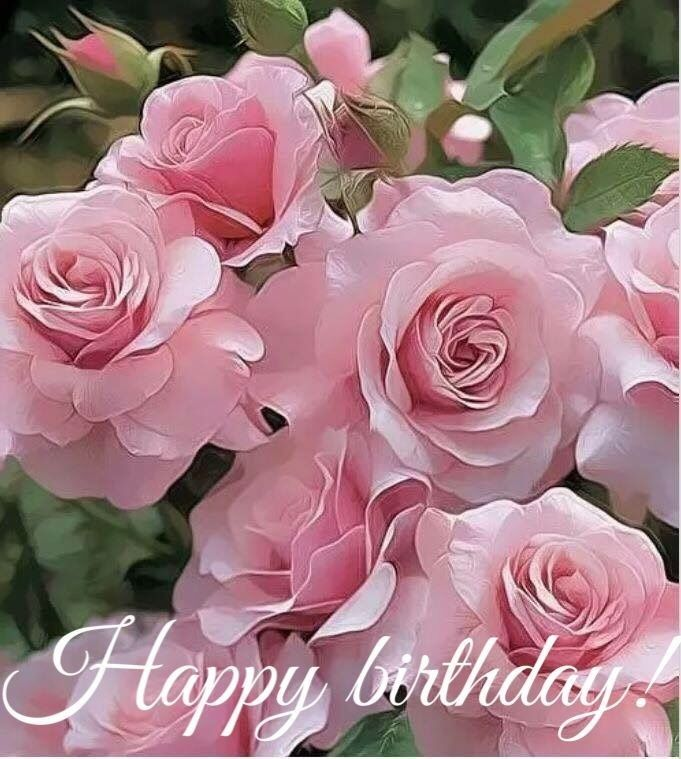 Happy Birthday Beautiful Flowers Hybrid Tea Roses Pink Flowers