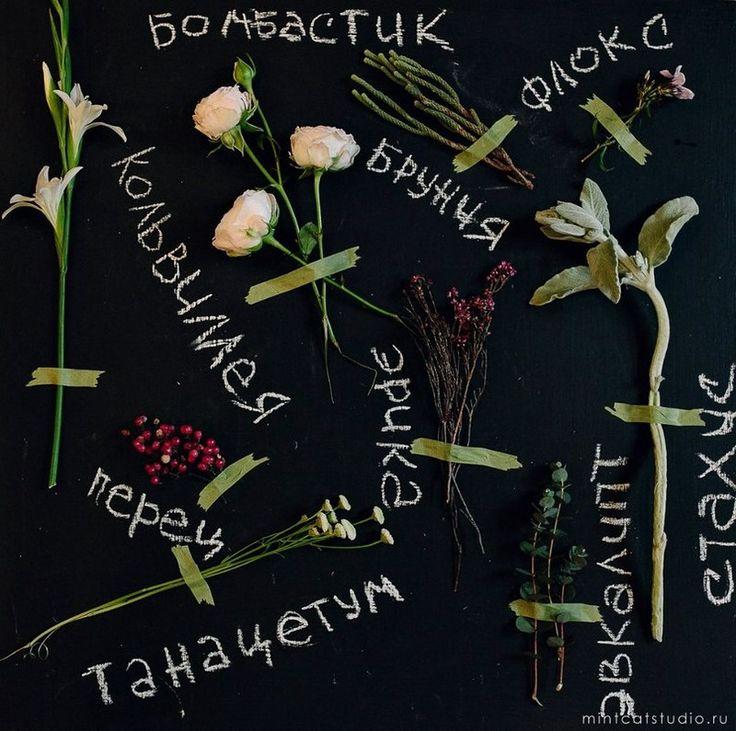 свадебный стиль ботаник - Поиск в Google