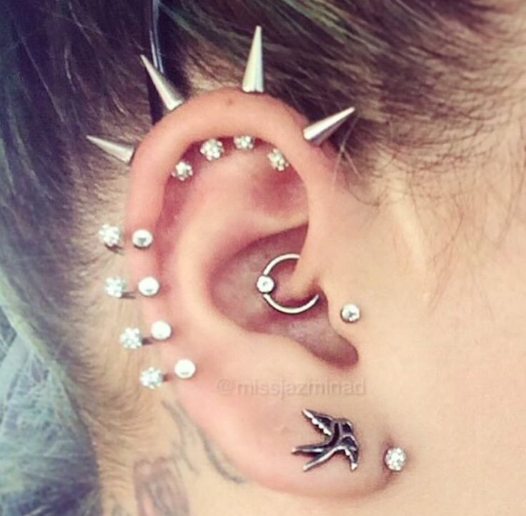 Pin By Misch Nakedtongue On Adornment Ear Piercings