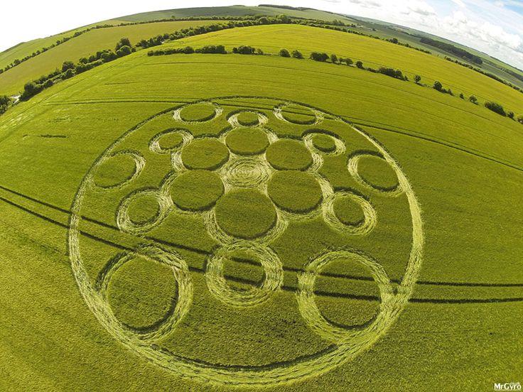 Straordinario Crop Circle compare nei campi di Woolstone Hill, nell'Oxfordshire (UK)   Segni dal Cielo