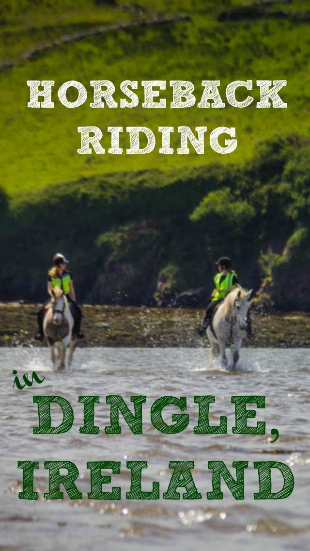 Horseback Riding in Dingle, Ireland. Ever since I was a little kid, I have dreamed about what it would be like to gallop across the countryside in far off places like Ireland and England. Since then I have become nothing short of a horse crazy adult and during our travels I have done what I could to get in the saddle. Read the full post at http://www.divergenttravelers.com/horseback-riding-in-dingle-ireland/