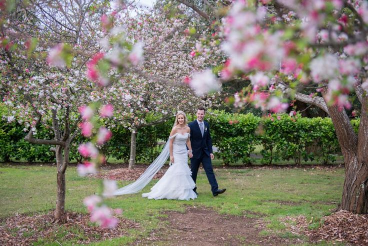Winter blossom wedding photo #bellsbride  #gardenwedding #bellsatkillcare #winterblossoms