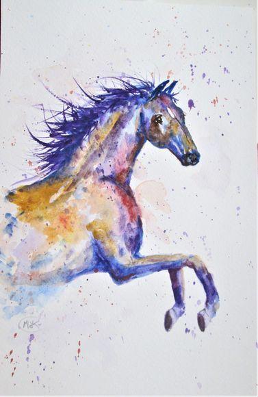 Colourful Horse (6107), wild horse