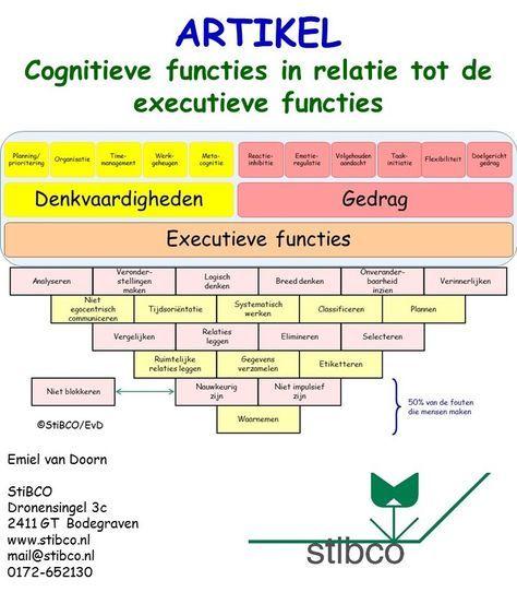 Voorkant artikel cognitieve functeis in relatie tot de Executieve functies StiBCO Emiel van Doorn