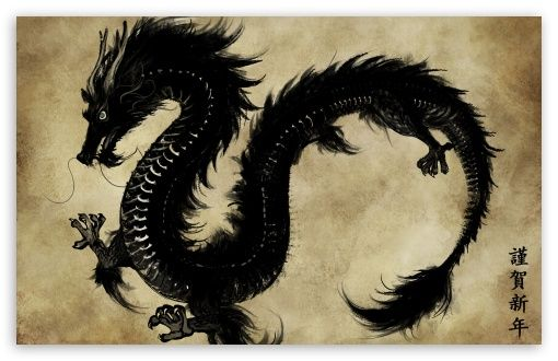 12 Best Dragons Images On Pinterest