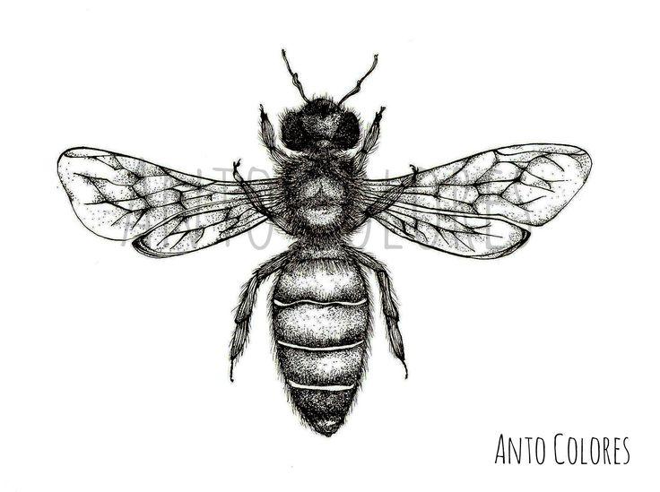 #bee #abeja #ilustracion #illustration #antocolores  www.instagram.com/anto.colores https://www.facebook.com/AntoColores/?ref=aymt_homepage_panel