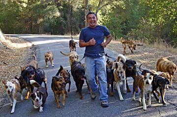 Cesar Millan Excited Dog Training