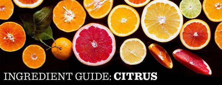 Citrus Ingredient Guide: Citrus Recipes and Cooking Techniques   SAVEUR