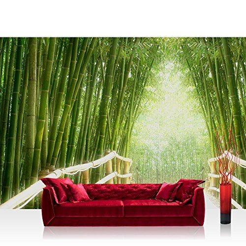 Vlies Fototapete 400x280 Cm Premium Plus Wand Foto Tapete Wand Bild Vliestapete Bamboo Walk Bambusweg Bambuswald Dschungel Fototapete Tapeten Bambus Tapete