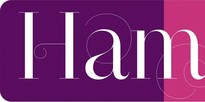 Narziss - Webfont & Desktop font.  Designed by Hubert Jocham.: Fancy Fonts, Desktop Fonts, Fonts Savant, Galleries, Fonts Candy, Narziss Pro, Myfont Beyonce, Serif Fonts, Fave Fonts