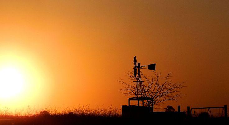 African Sunset    https://www.facebook.com/Deborah-Verwey-Photography-1476207782685276/?ref=aymt_homepage_panel