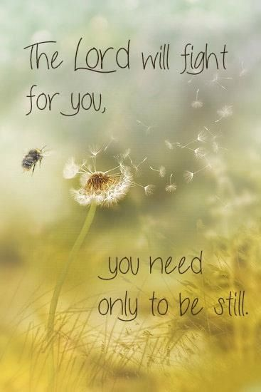 Exodus 14:14 ~ The Lord will fight for you...you need only to be still...:
