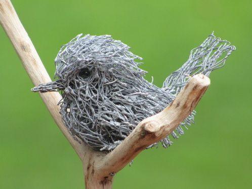Chicken Wire:Birdie