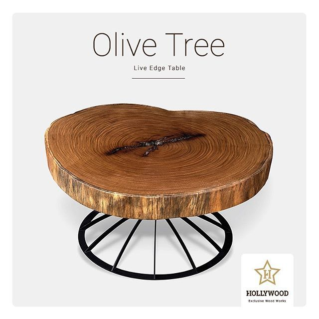 Hollywood Zeytin Ağacı Orta Sehpa | Olive Tree Coffee Table #wood #wooden  #coffeetable