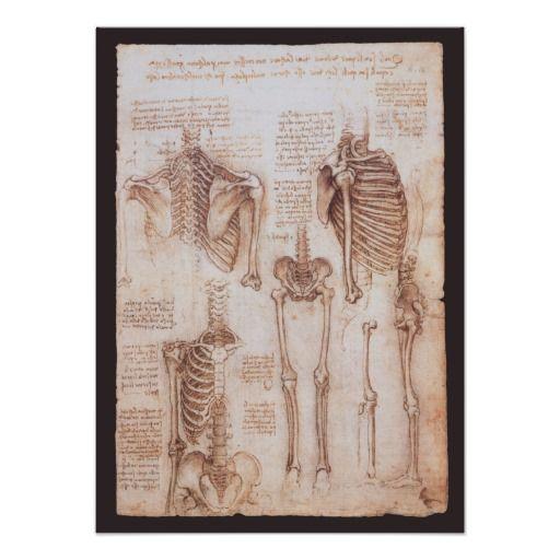 62 Best Leonard De Vinci Images On Pinterest Drawings Of Sketches