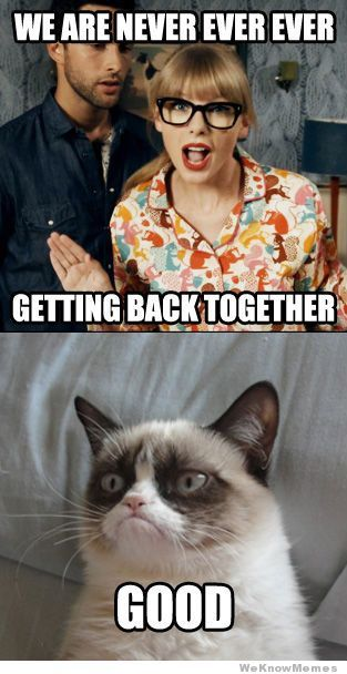 my favorite grumpy cat meme