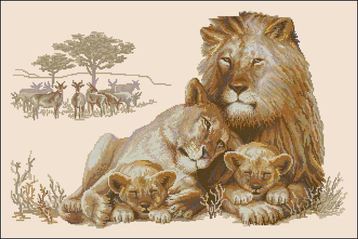 Львиный рай 2 львёнка