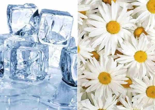 Готовим кубики льда для красоты