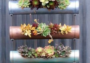 Μικροί κρεμαστοί κήποι | MeaColpa