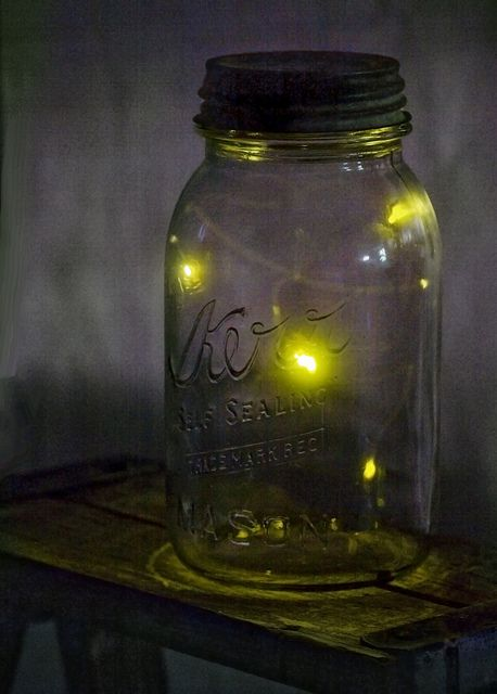 We use to catch them! Lightening bugs....:)