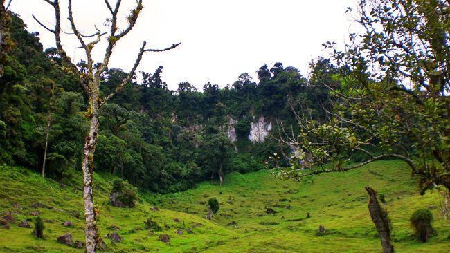 Soberania National Park (Panama)
