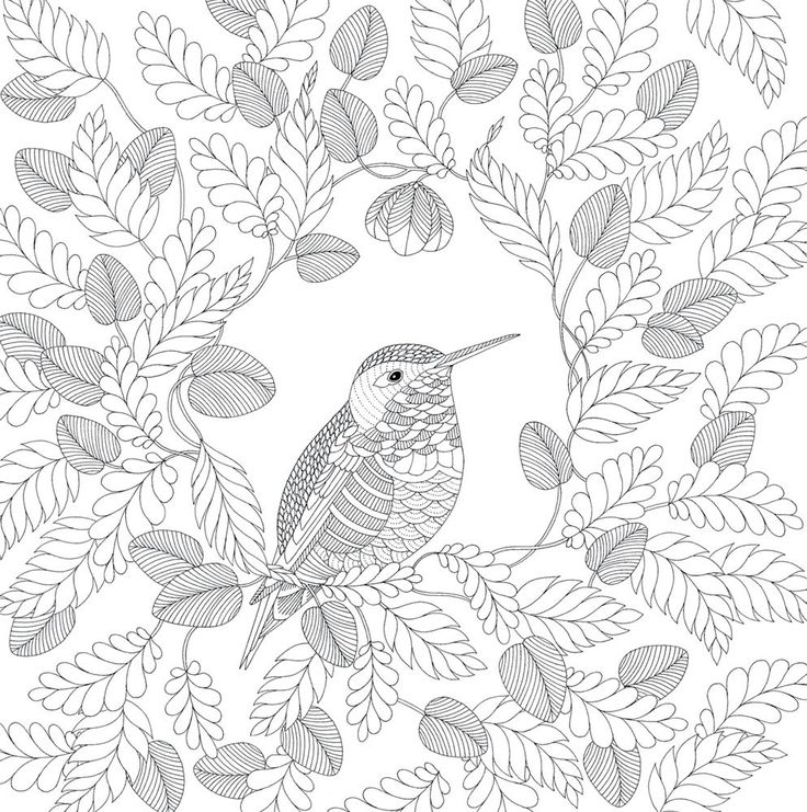 19 best dibujos librof images on Pinterest Coloring books - best of coloring pages for the number 19
