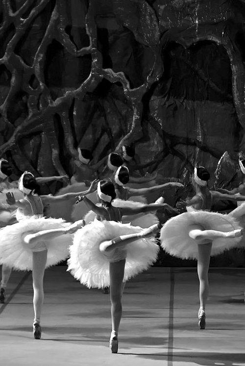 Swan Lake ballet ballerinas dance stage tutus royal legs movement photography