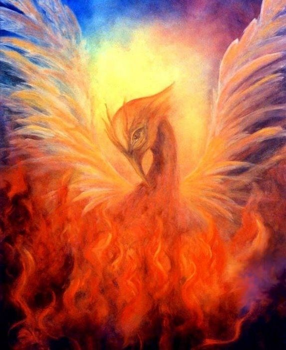 Картинки для, картинки птица феникс настоящей