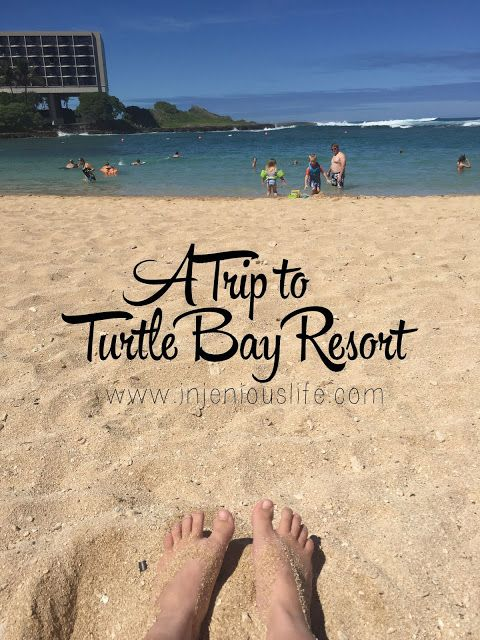A Visit to Turtle Bay Resort