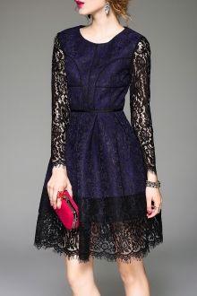 Lace Insert Jacquard A Line Dress