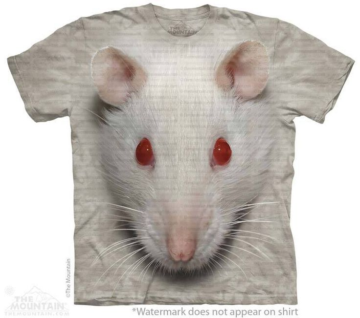 White Rat T-Shirt - T-Shirt with Pets - Cute T-Shirts - Animals t-shirts for women - t-shirt present idea - small pet t-shirts - t-shirts with small pets for kids - kids clothing