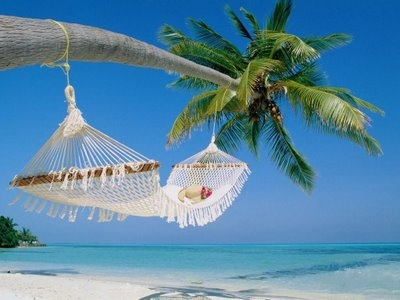 uma rede pra deitar...: Dreams, Hammocks, Palms Trees, Best Quality, Islands, Places, The Maldives, Heavens, The Beaches