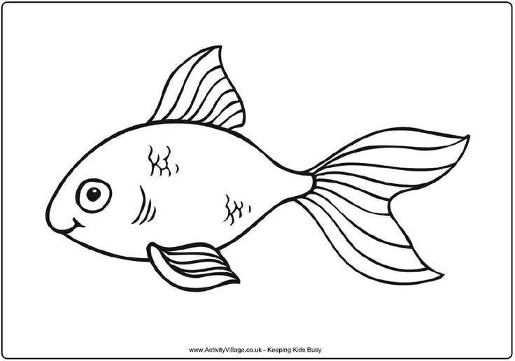 97 Best Images About Under The Sea Coloring Or Painting Pages On Pinterest