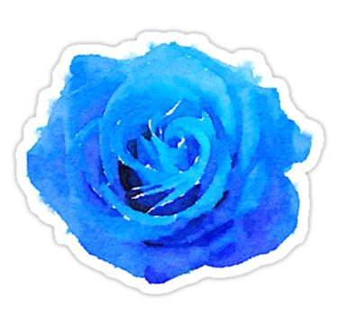 Blue rose watercolor by rachelyouens