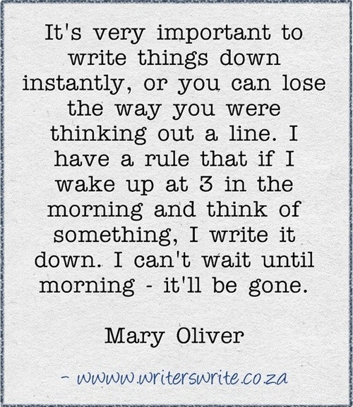 How To Put A Quote In An Essay: Best 25+ Mary Oliver Quotes Ideas On Pinterest