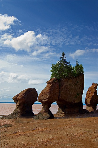 Hopewell Rocks - Low Tide by Microcontroleur, via Flickr  Rocks at Hopewell Cape, Bay of Fundy, New Brunswick