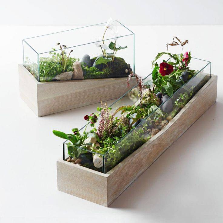 Creative firm Roar + Rabbit designs textiles, furniture and home accessories that blend modern style with whimsical details. With their ash wood veneer bases and open glass tops, our Angled Wood Terrariums are perfect for holding small ferns, flowers or succulents.