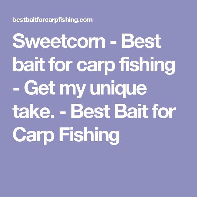 Sweetcorn - Best bait for carp fishing - Get my unique take. - Best Bait for Carp Fishing